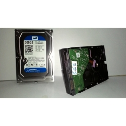 WDC 500GB BLUE SATA
